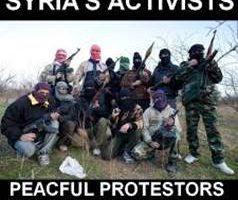 terroristers-galskap